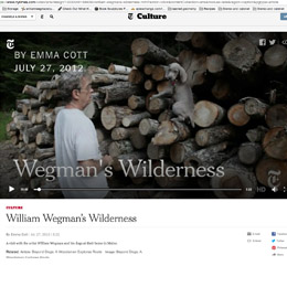 William Wegman's Wilderness New York Times, 2012