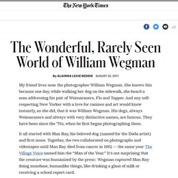 New York Times, 2017