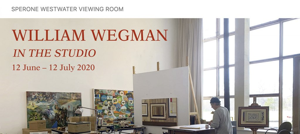 William Wegman: In the studio