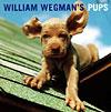 Wegman's Pups, 1999